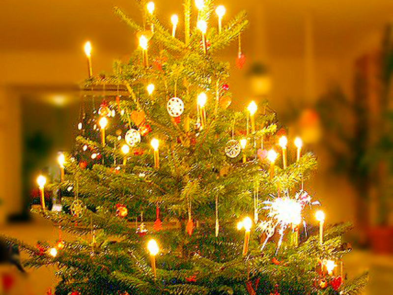 Weihnachtsbaum Kaufen Gütersloh.Weihnachtsbäume Werden Abgeholt Radio Gütersloh